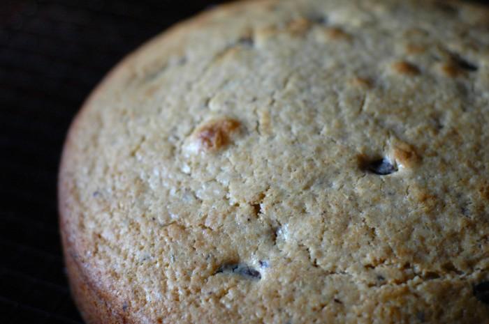olive oil rosemary cake_4