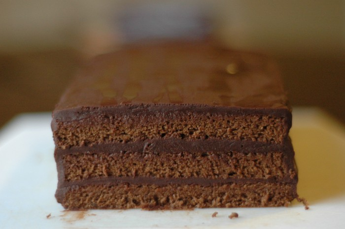 chocolate sponge cake_2