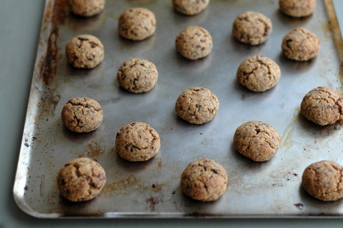 Almond Cookies with Coconut + Cacao Nibs // Delightful Crumb