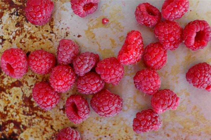 RASPBERRIES FOR CRUMBLE // Delightful Crumb
