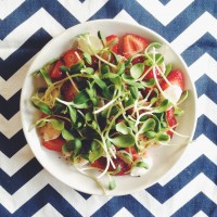 Simple Summer Bliss | Strawberry & Mozzarella Salad