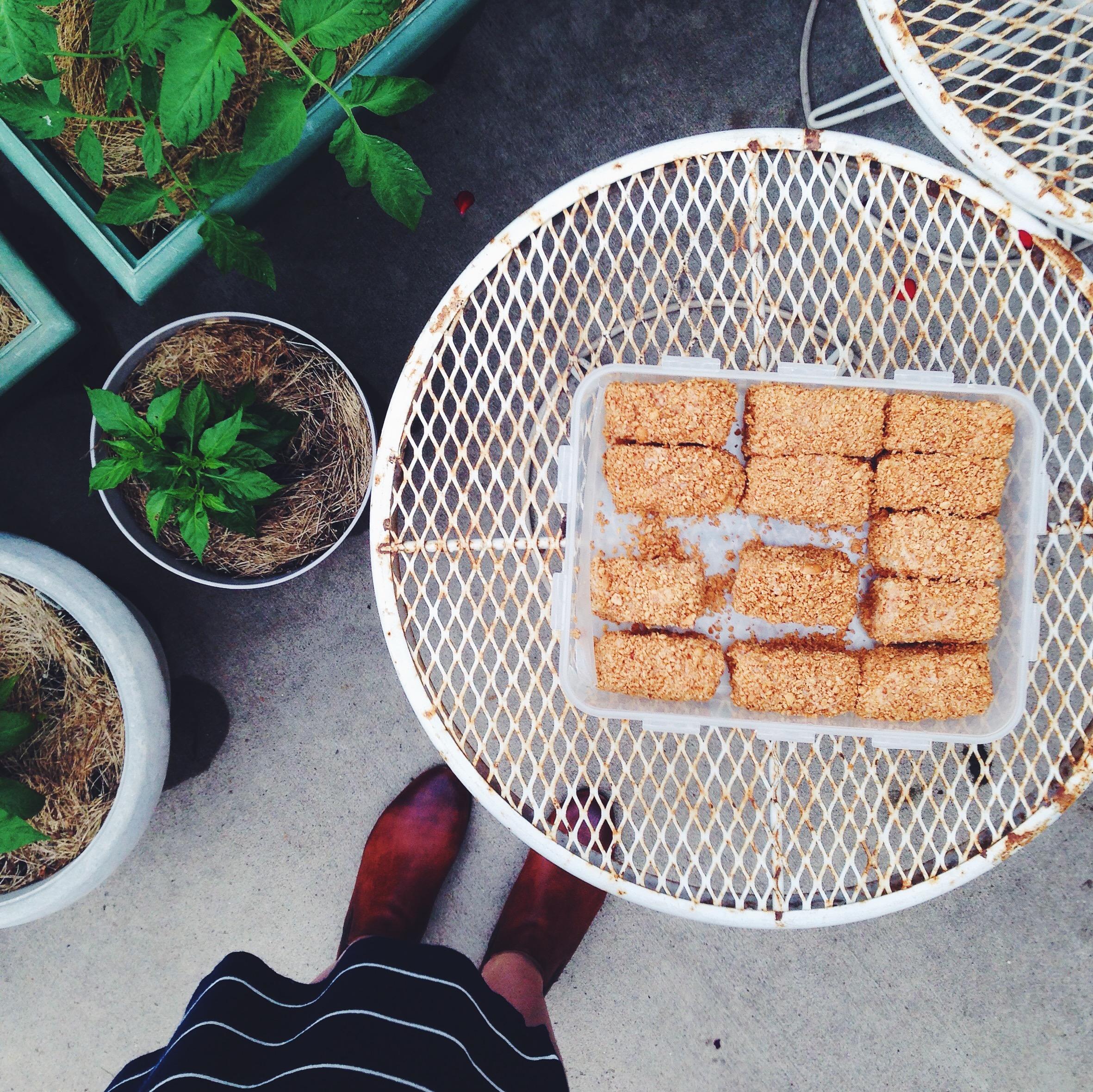 Peanut Bars | Delightful Crumb