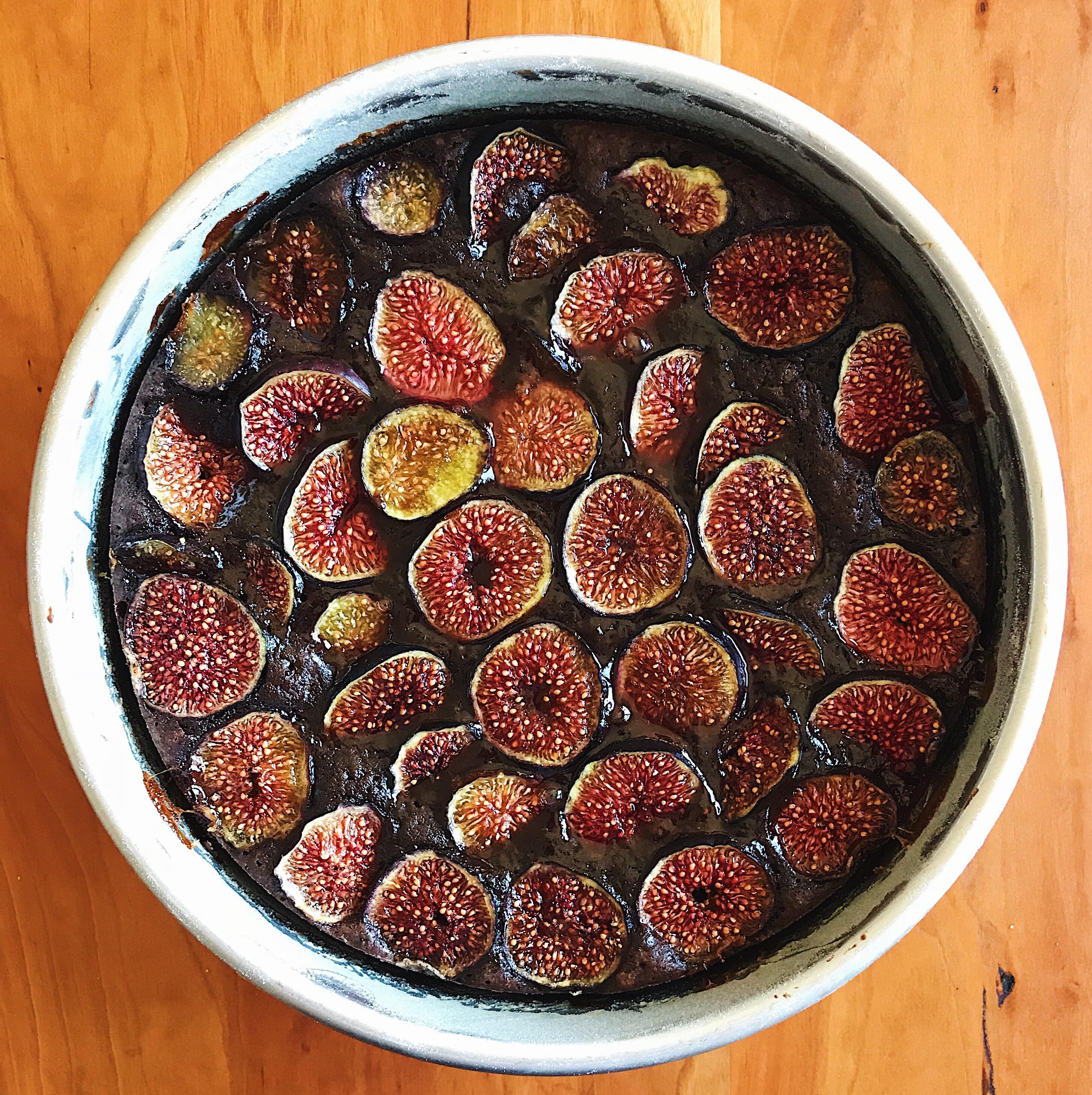 Chocolate Fig Cake | Delightful Crumb