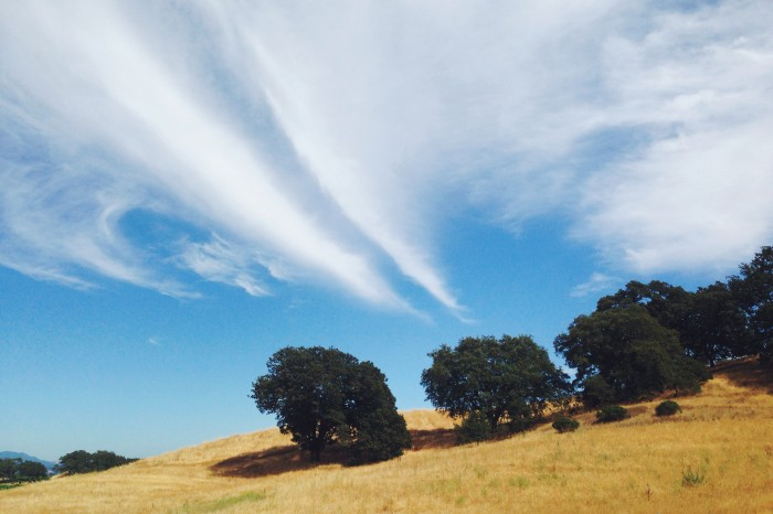 wine country clouds | Delightful Crumb